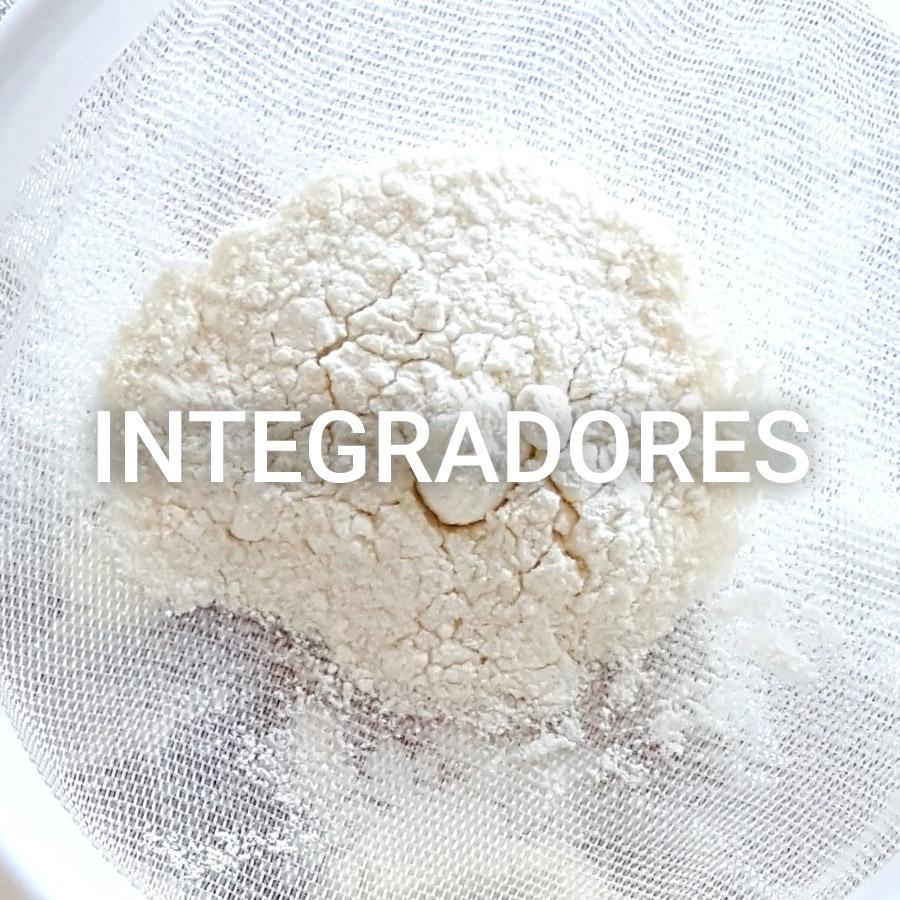 Integradores